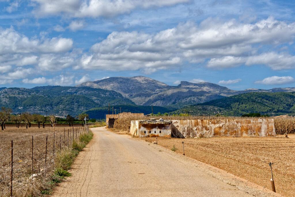 Pla de Mallorca