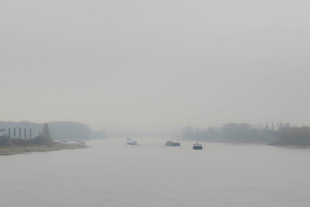 Rhein bei Hersel