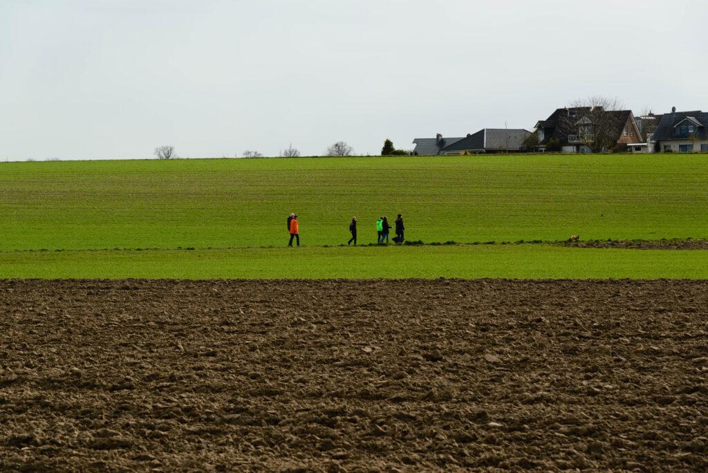 Landschaft bei Hersel